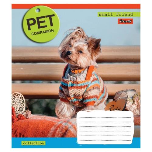 А5/12 лин. 1В Pet companion -17 тетрадь ученич. 760485
