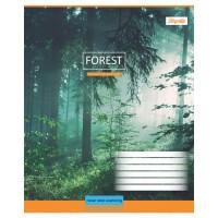 А5/12 кл. 1В Magic Forest - 17 тетрадь ученич.