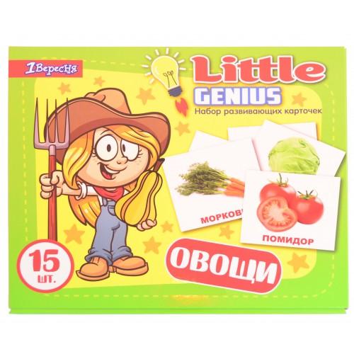 """Набор детских карточек """"Овощи"""", 15 шт в наборе (рус) 951299"""