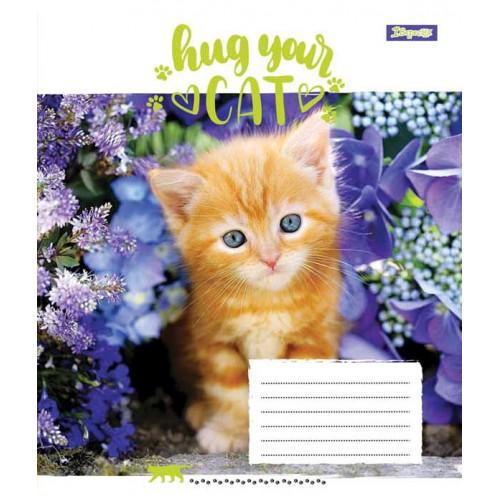 А5/12 лин. 1В Hug Your Cat, тетрадь ученич. 761779