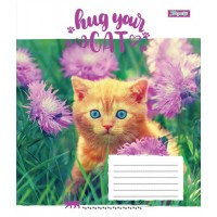 А5/12 лин. 1В Hug Your Cat, тетрадь ученич.