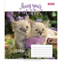 А5/18 кл. 1В Hug Your Cat, тетрадь ученич.