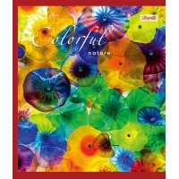 Тетрадь 1 Вересня, А-5, 24л, клетка,  Colorful