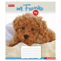 Тетрадь 1 Вересня, А-5, 24л, линия,  Favorite Dog