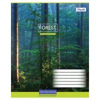 Тетрадь 1 Вересня, А-5, 60л, клетка,  Magic Forest