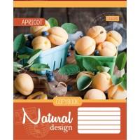 Тетрадь 1 Вересня, А-5, 60л, клетка,  Natural Fruits