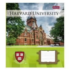 Тетрадь 1 Вересня, А-5, 36л, линия,  Harvard College life