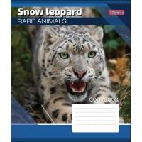 А5/12 лин. 1В RARE ANIMALS, тетрадь учен.