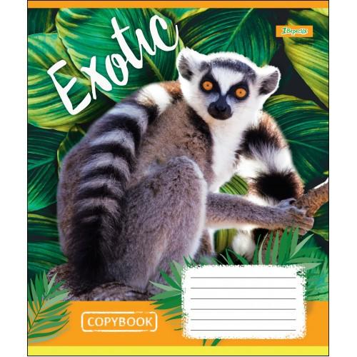 А5/12 лин. 1В EXOTIC ANIMAL, тетрадь учен. 764473