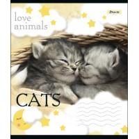 А5/18 кл. 1В LOVE ANIMALS, тетрадь учен.