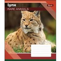 А5/18 лин. 1В RARE ANIMALS, тетрадь учен.