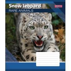 А5/24 лин. 1В RARE ANIMALS, тетрадь учен.