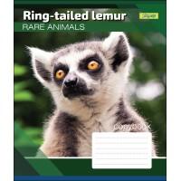 Тетрадь А5 48 Лин. 1В Rare Animals