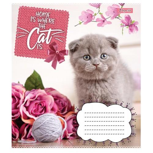 А5/12 кл. 1В CATS, тетрадь учен. 764804