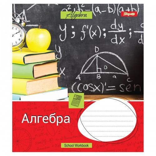 Тетрадь для записей А5/48 кл. 1В АЛГЕБРА (Workbook) выб.гибрид.лак 764876