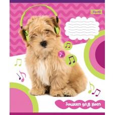 Нотная Тетрадь А5 12 1B Pets In Headphone