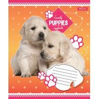 А5/12 кос. 1В Lovely puppies, тетрадь учен.
