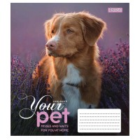 Тетрадь А5 48 Кл. 1В Dog Loyality
