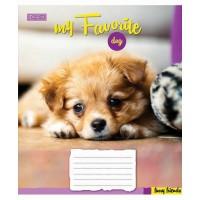 А5/12 кл. 1В Favorite Dog-17 тетрадь ученич.