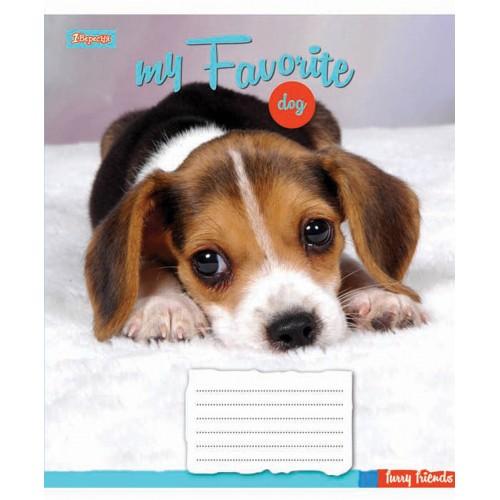 А5/12 лин. 1В Favorite Dog-17 тетрадь ученич. 760312
