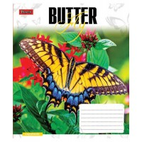 А5/36 лин. 1В Butterflys-17 тетрадь ученич.