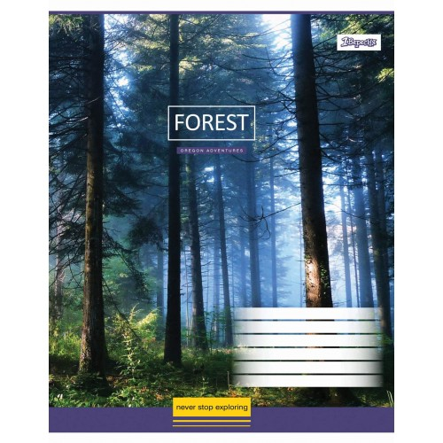 А5/48 лин. 1В Magic Forest -17 тетрадь ученич. 760404