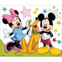 "Холст с контуром ""Микки и его друзья-2"" (25см*25см) с красками"