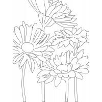 """Холст с контуром """"Цветы"""" (30см*40см)"""